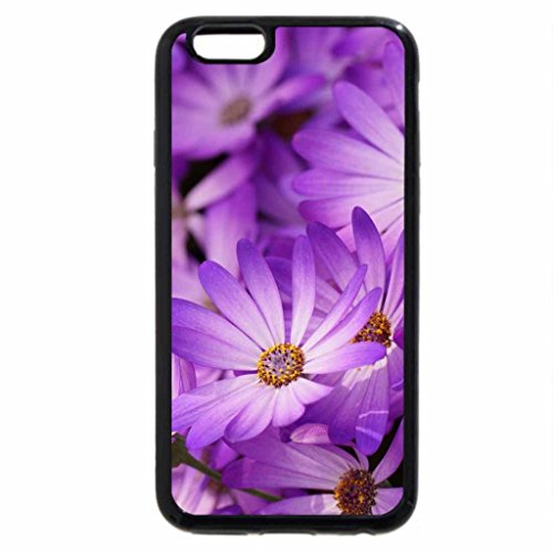 iPhone 6S Plus Case, iPhone 6 Plus Case, Purple Dasies