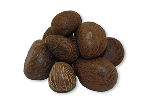 Bag of 10-Eco-friendly, easy to carve tagua nuts