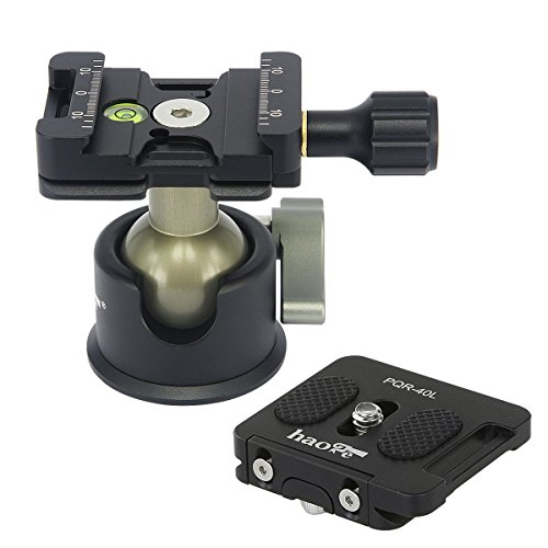 Haoge BH-45 Low Profile Ballhead Tripod Ball Head with Arca-Compatible Screw-Knob Quick Release Clamp and Plate for Tripod Monopod Slider DSLR Camera Camcorder Max Loading 8kg 17.6lb