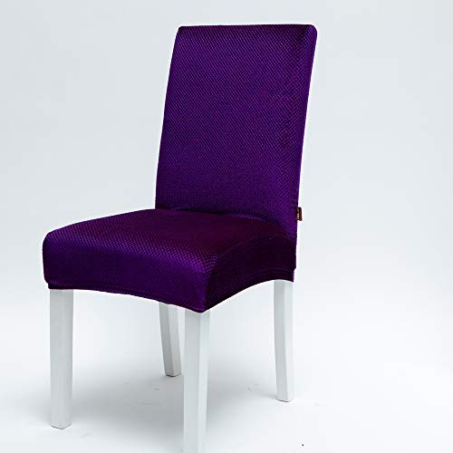 Jialiin Velvet Stretch Dining Chair Slipcovers - Spandex Plush Short Chair Covers Solid Large Dining Room Chair Protector Home Decor (Purple, 2)