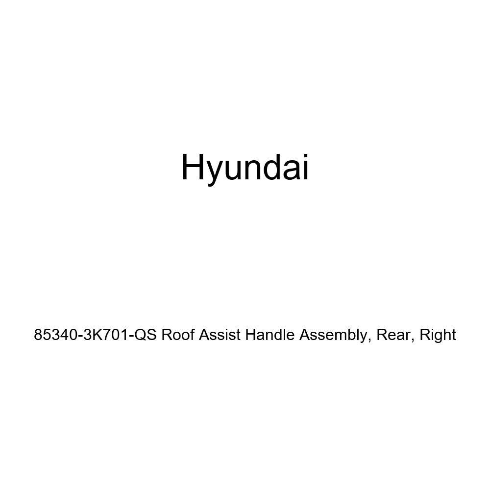 Rear Right Genuine Hyundai 85340-3K701-QS Roof Assist Handle Assembly