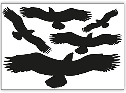 Wandkings Vogelschutz Und Fensterschutz 5 Aufkleber Zum Schutz Vor Vogelschlag Schwarz Erhältlich In 33 Farben Küche Haushalt