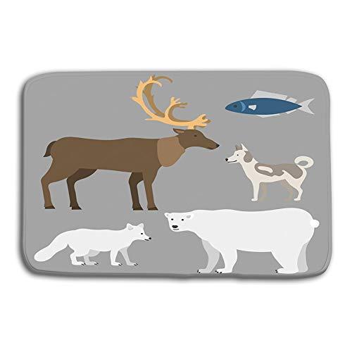 Stugfhj Doormat Indoor Outdoor Alaska Vector State Symbols Flat Style America Travel Animal National Geographic Outdoor mat