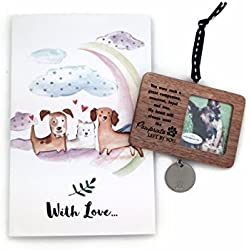 Pet Pawprint Ornament with Rainbow Bridge Pet Memorial Card Pet Loss Gift Set Paw Prints Left by You
