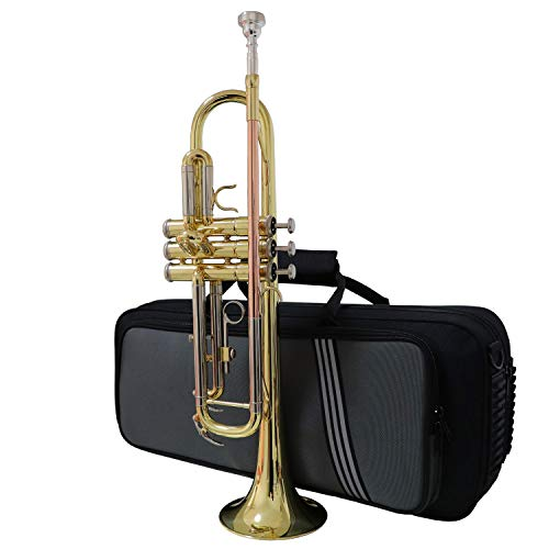 Jody Blues Beginners Trumpet Cornet Trumpet Instrument Brass Bb Standard School Student Trumpet JTT-705 Phosphor Copper Glod Lacquer Trumpet Bach With Durable Hard Case Gloves Clothing 7C Mouthpiece