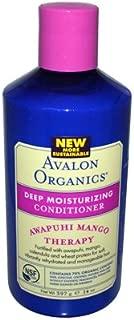 product image for Avalon Organics Awapuhi Mango Deep Moisturizing Conditioner, 14 Ounce