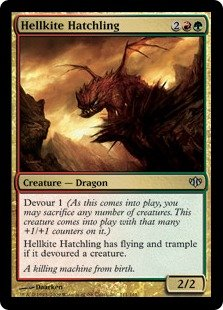 - Magic: the Gathering - Hellkite Hatchling - Conflux - Foil