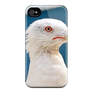LJF phone case Defender Case With Nice Appearance (venece Seagull In Venice) For Iphone 4/4s