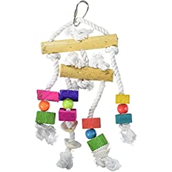 Prevue Pet Products BPV60935 Bodacious Bites Bird Toy, Small/Medium, Buffet