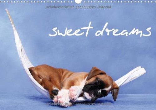 sweet dreams - schlafende Hundewelpen (Wandkalender 2013 DIN A3 quer): Immerwährender Kalender (Monatskalender, 14 Seiten)
