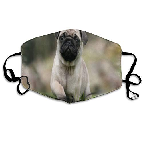Custom Mouth Mask Anti-Dust Pug Dog Face Mask Breathable Mask With Adjustable Ear-loop Windproof And -