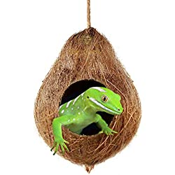 "Crested Gecko Coco Hut --- Treat & Food Dispenser - Sturdy Hanging Home, Climbing Porch - Hiding, Sleeping & Breeding Pad - 4.5"" Round Coconut Shell with 2.5"" Opening - Ideal for Reptiles, Amphibians"