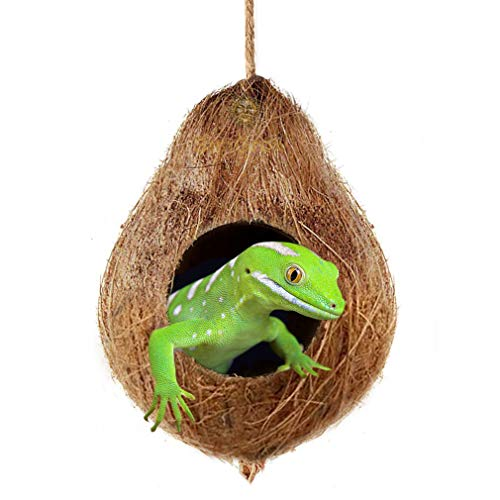 Crested Gecko Coco Hut --- Treat & Food Dispenser - Sturdy Hanging Home, Climbing Porch - Hiding, Sleeping & Breeding Pad - 4.5