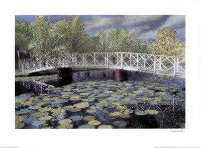 Evelyn Lily - Water Lilies by Evelyn Hammond - 24x18 Inches - Art Print Poster