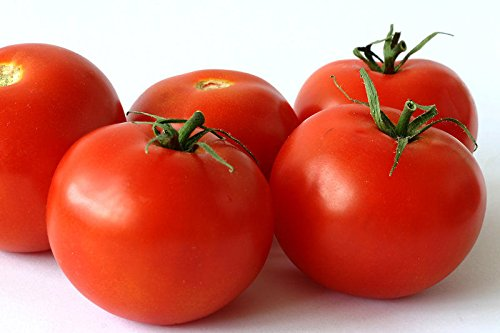25 Premium, Hand Selected, Organically Grown, Campari Tomato Seeds ()