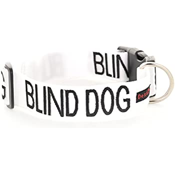 """Blind Dog White Color Coded Alert Warning S M L XL Buckle Dog Collars  (L-XL Collar 15-25""""Lx1.5""""W)"""