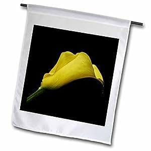Florene Flower - Yellow Calla - 12 x 18 inch Garden Flag (fl_57677_1)