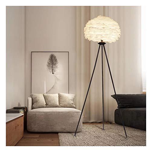 (JDGK Floor Lamp Floor-standing Reading Lamp Feather Eye Protection Vertical Table Lamp Living Room Study Bedroom Decoration Lamp, Floor Lamp Diameter 45 Height 1.63 Meters To Send LED Light Source)