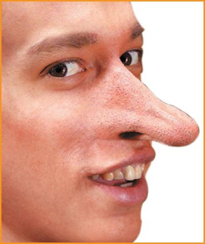 Rubie's Costume Co Reel Fx-Fantasy Nose Costume
