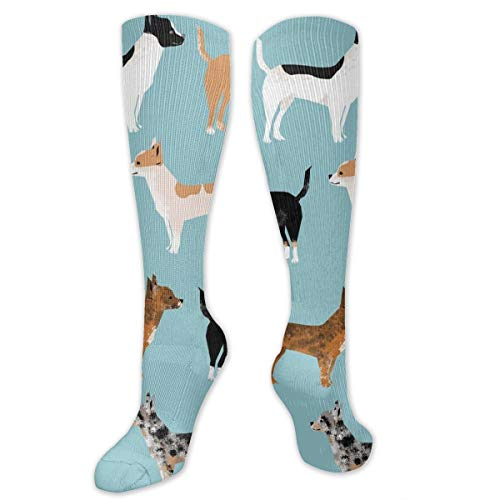 Xayeu Chihuahua Coats Dog Compression Socks Women Knee High for Pregnancy, Nurses, Maternity, Travel, Flight, Running, Sports.