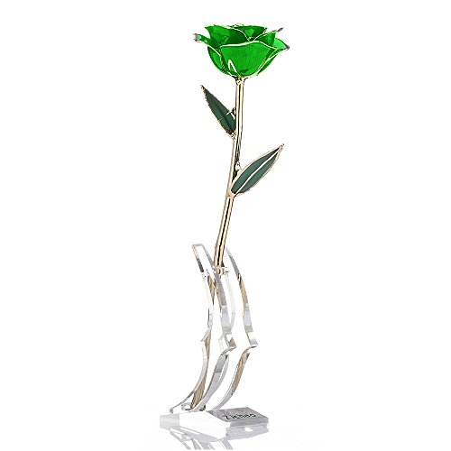 ZJchao Long Stem Dipped 24k Gold Trim Red Rose In Gold Gift Box with stand (green rose with stand) (Green Red Gold)
