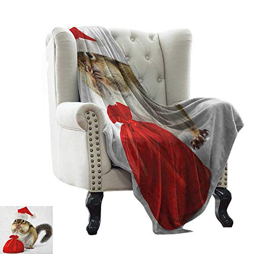 (Anyangeight Christmas, Blankets King Size, Chipmunk in Red Santa Claus Hat and Bag with Surprise Xmas Presents, Custom Design Cozy Flannel Blanket, (W90 x L110 Inch Pale Yellow White Red)