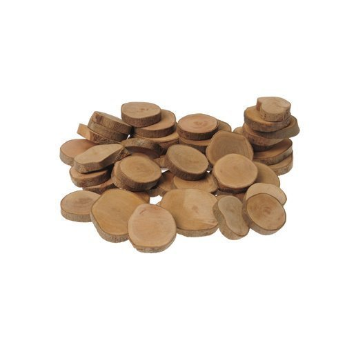 45 Piece Tree Rings Set For Kids Science Observation and Sorting and Counting