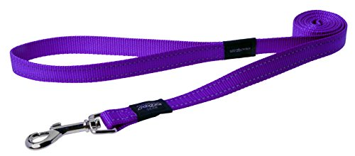 "Reflective Dog Leash for Large Dogs, 3/4"" wide, 6' long, Purple"