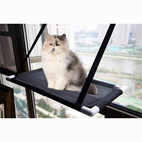 David City Cat Window Perch, Cat Sunbathing, Cat Hammock Can Place to Any Smooth Position with A Suction Cup to Carry 35 Pounds. Enjoy 360 Degrees Sunbathing. (Black)