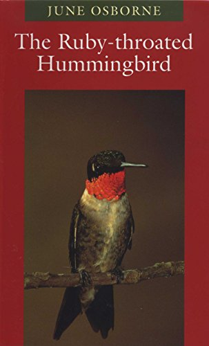 The Ruby-throated Hummingbird (Corrie Herring Hooks Series) (Ruby Osborne)