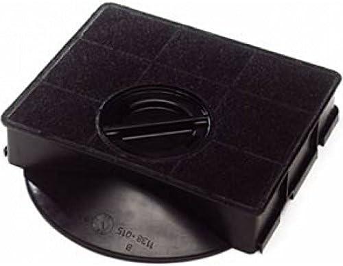 Elica - Filtro de carbón para campana extractora Elica Elibloc 9 / Rubino Angular: Amazon.es: Hogar