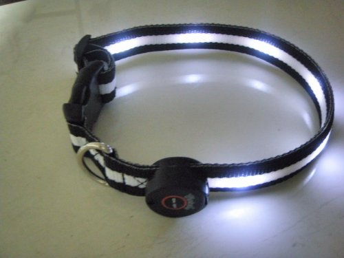 6 LEDlighted Dog Collar Flashing Light Up Safety Collar-White, My Pet Supplies