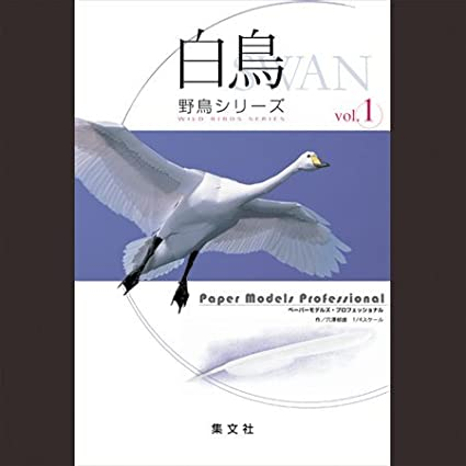 Amazon Harness Paper Models Figure Professional Wild Bird