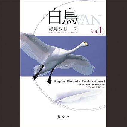Amazon Harness Paper Models Figure Professional Wild Bird
