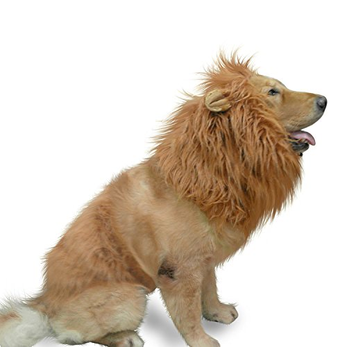 IN HAND Dog Lion Mane,Funny Lion Mane for Dogs,Lion Mane Costumes, Lion Wig for Medium to Large Dogs, Lion Mane Wig for Halloween,Party]()