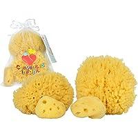 Natural Sea Sponges for Newborn, Baby & Toddler Bath 4 Pack: Gentle Hypoaller...