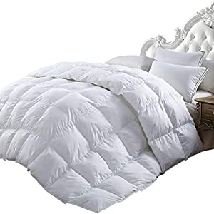 Luxurious All-Season Goose Down Comforter Duvet Insert, Exquisite Pinch Pleat Design, 1200 Thread Count 100% Egyptian Cotton Down Proof Fabric, 750+ Fill Power, 65 oz Fill Weight, White from Egyptian Cotton Factory Outlet Store