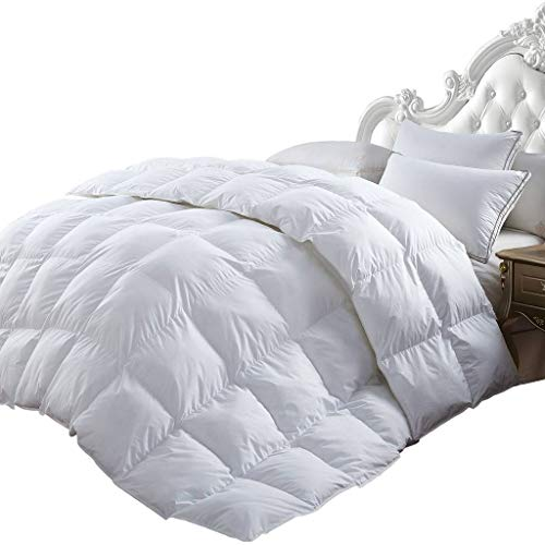 Best Review Of Luxurious All-Season Goose Down Comforter Duvet Insert, Exquisite Pinch Pleat Design, 1200 Thread Count 100% Egyptian Cotton Down Proof Fabric, 750+ Fill Power, 65 oz Fill Weight, White
