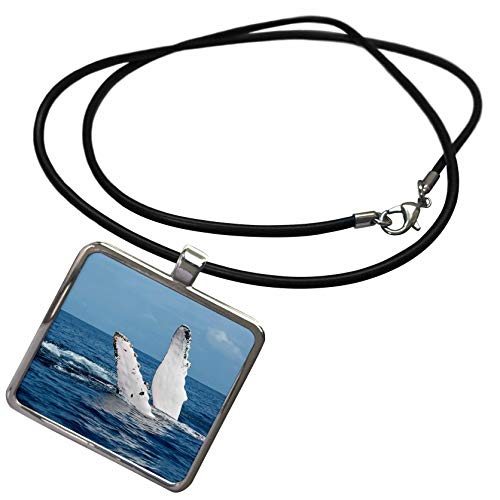 3dRose Danita Delimont - Whales - A Humpback Whale Floats on its Back, Silver Bank, Dominican Republic - Necklace with Rectangle Pendant (ncl_312990_1)