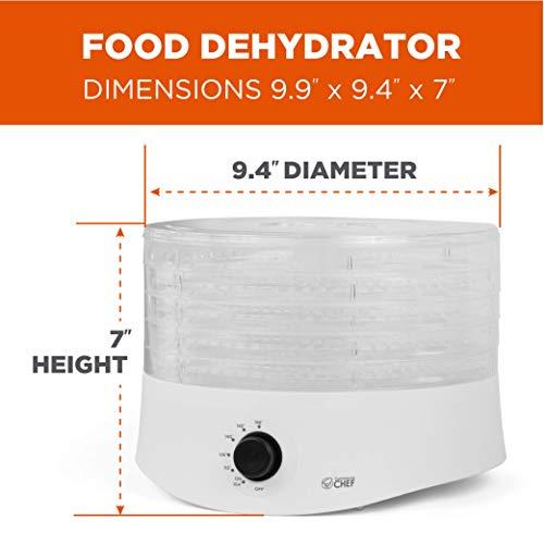 Buy small food dehydrator