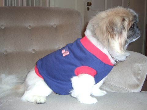Joybies Patriotic T Shirt for Male or Female Dog Medium 15 -17 Inches Navy with US Flag