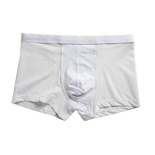 Men Underwear Brief,Anboo ORLVS Men Sexy Underwear Printed Briefs Shorts Bulge Pouch Underpants Sexy Sleepwear (White, (Garden Boxer Shorts)