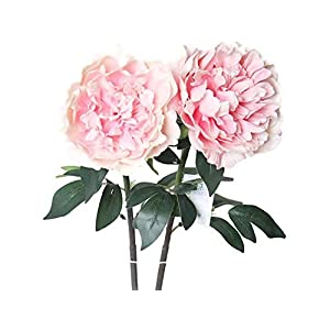 Floral Kingdom 30' Real Touch Latex Artificial Peony Flowers vase Arrangements, weddngs, Home/Office Decor (Pack of 3) 4