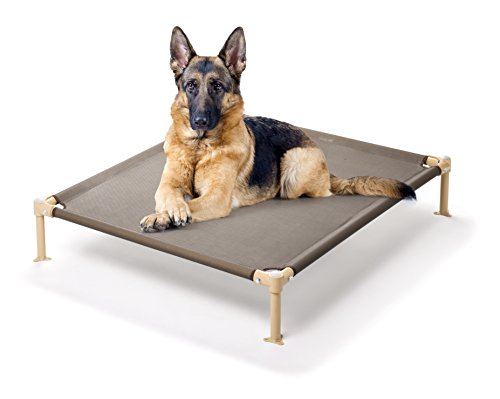 Hugs Pet Products Cool Cot Indoor/Outdoor Elevated Pet Bed, Large