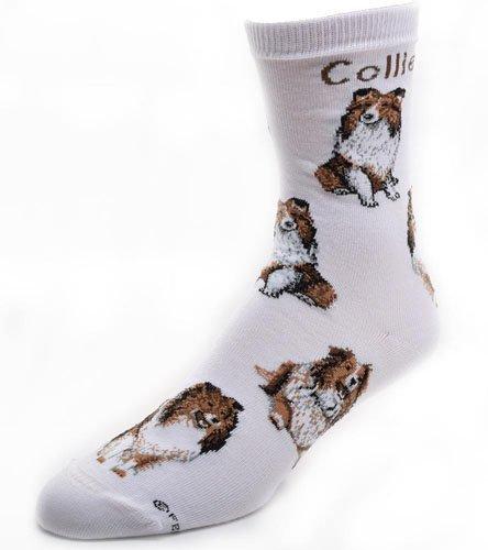 Lg Print Collie Dog Poses socks,Multi Color,Medium