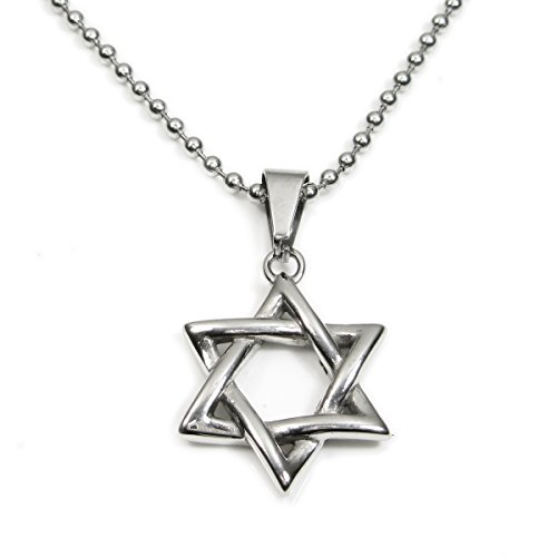 Stainless Steel Silver Tone Star of David Pendant Necklace