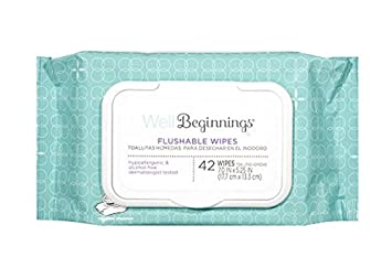 Amazon.com : Well Beginnings Flushable Toddler Wipes 42 Ct (2 Pack) 84 total Wipes : Baby