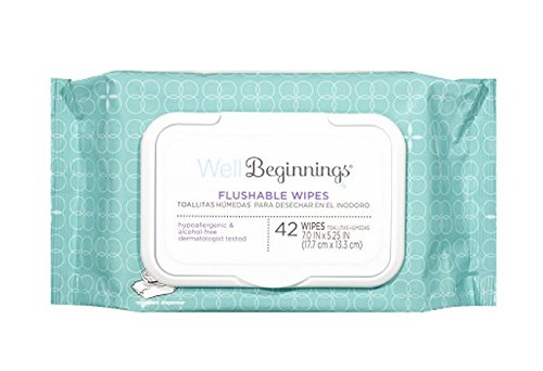 Well Beginnings Flushable Toddler Wipes 42 Ct (2 Pack) 84 total Wipes