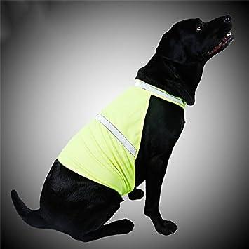 lulalula Gilet de sécurité pour chien, chien Haute visibilité Veste légère Fluo réfléchissant Manteau pour chien 2tailles