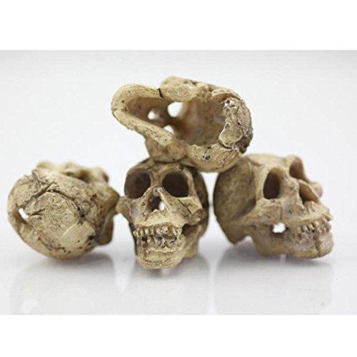 Lywey Halloween Aquarium Decorative Resin Skull Crawler Dragon Lizards Decoration